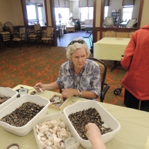 Shoreview Senior Living-Lunch and Crafts (6)