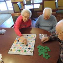 Shoreview Senior Games in Garden Cove