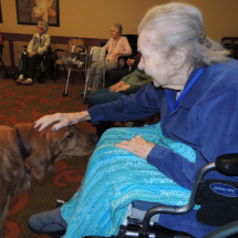 Leo at Shoreview Senior Living February 2018